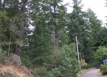 Chek TV: Langford community group to fight to preserve parcel of land