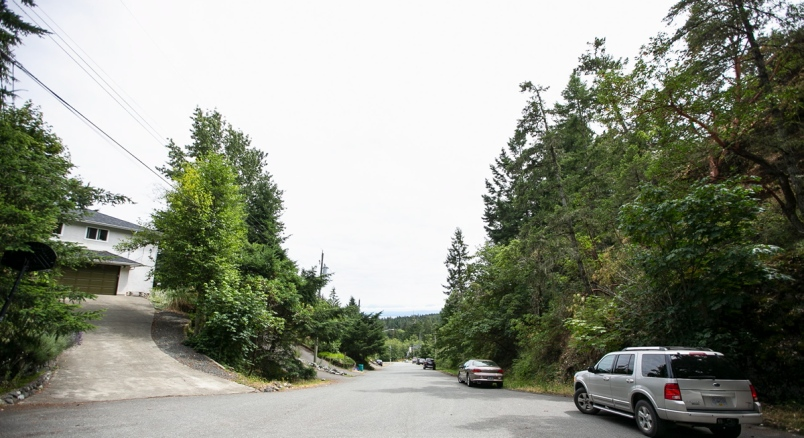 Times Colonist: Langford councillors advance development plan for forest, despite residents' dismay